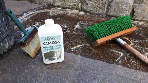 odstranjevanje mahu in alg iz porfida