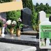 zaščita spomenikov